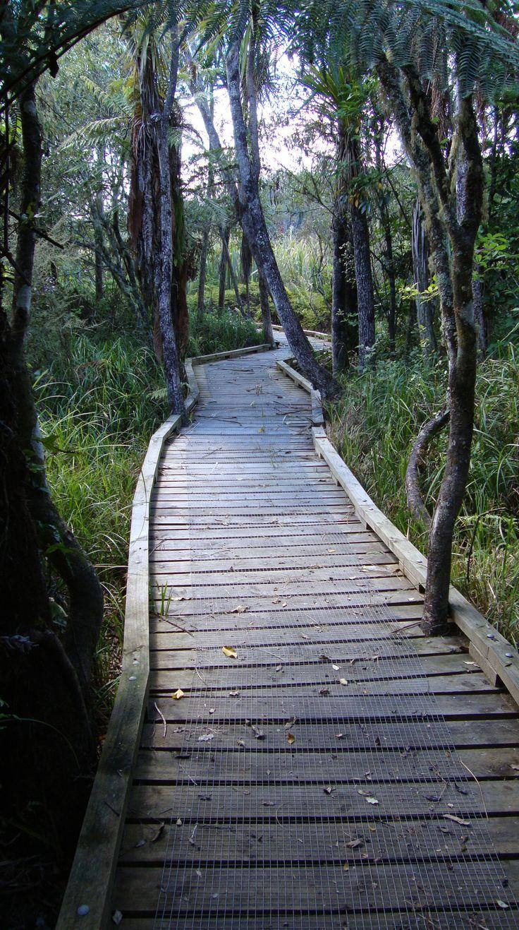 Waikato River Trails - NZ