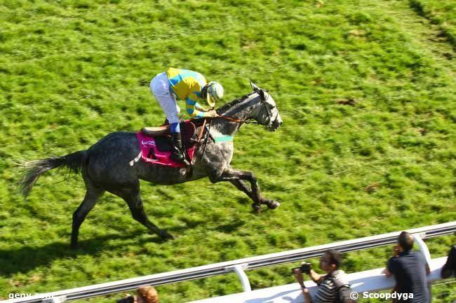 auteuil arrivée 4 13 6 9 8 - dimanche longchamp 16 chevaux http://les-amis-du.pmu-pronostics.com