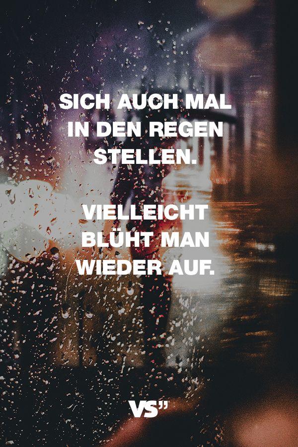 Visual Statements®️️️️ Sprüche/ Zitate/ Quotes/ Motivation/ Sich auch mal in den Regen stellen. Vielleicht blüht man wieder auf.
