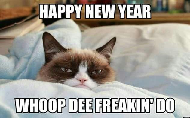 Happy New Year Grumpy Cat!