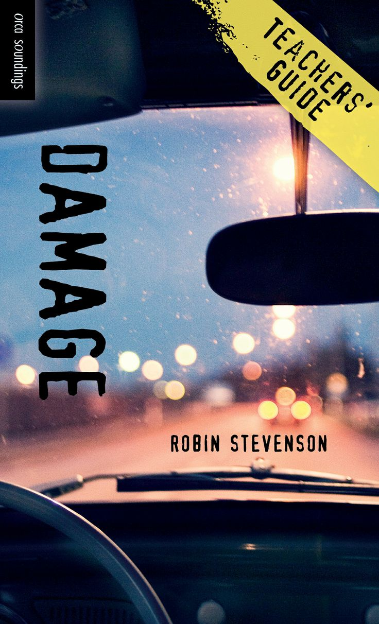 Teachers' Guide for Damage by Robin Stevenson, part of the Orca Soundings series for reluctant readers ages 12+.