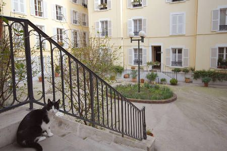 Check out this awesome listing on Airbnb: Houdon Hideaway in Paris - this place is gorgeous, going to be hard to choose our flat for a week!