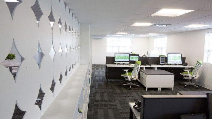 Programming pod @ Treefrogs New Newmarket Offices