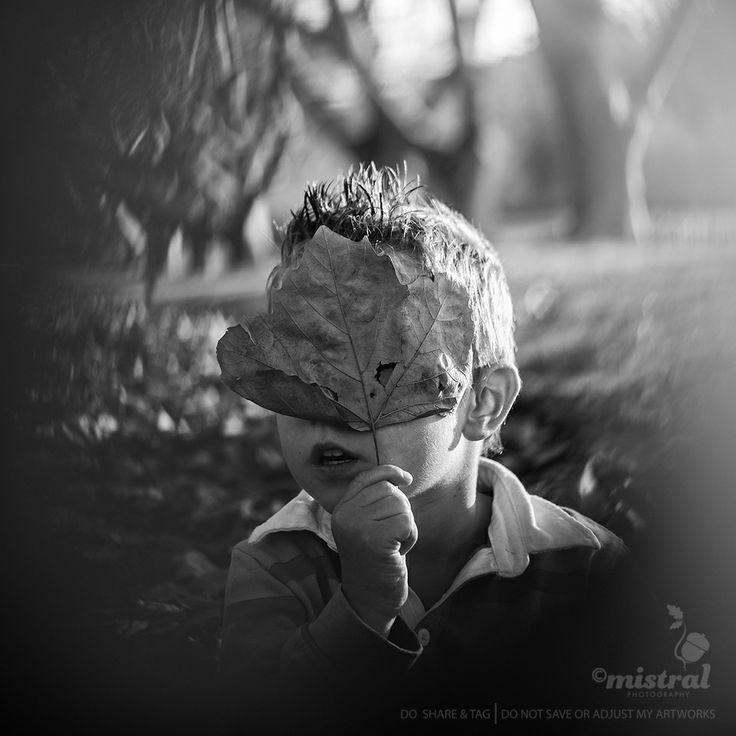 Shot through a hole in a leaf. Autumn Children's Portrait. #ChildrensPhotography   www.mistralphotography.co.nz