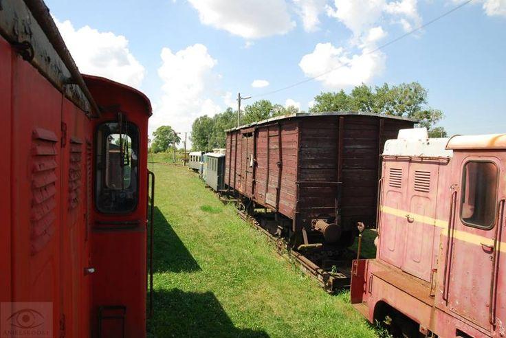 skansen Kolei Wąskotorowej Rogów - Rawa - Biała #Łódzkie #Rogów #Polska #podróże #kolej