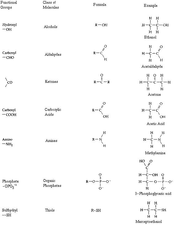 Chart Of The Major Physical And Chemical Properties