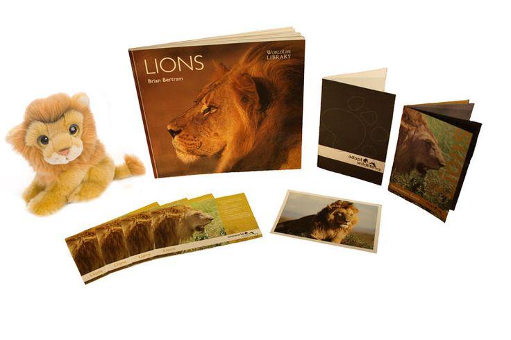 http://oneworldwildlife.org/dev/wp-content/uploads/2014/11/lion-adoptionpack2.jpg