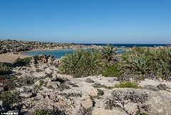 http://www.west-crete.com/dailypics/crete-2015/11-11-15.php