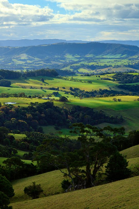 Saddleback Mountain, New South Wales, Australia Steve Arnold