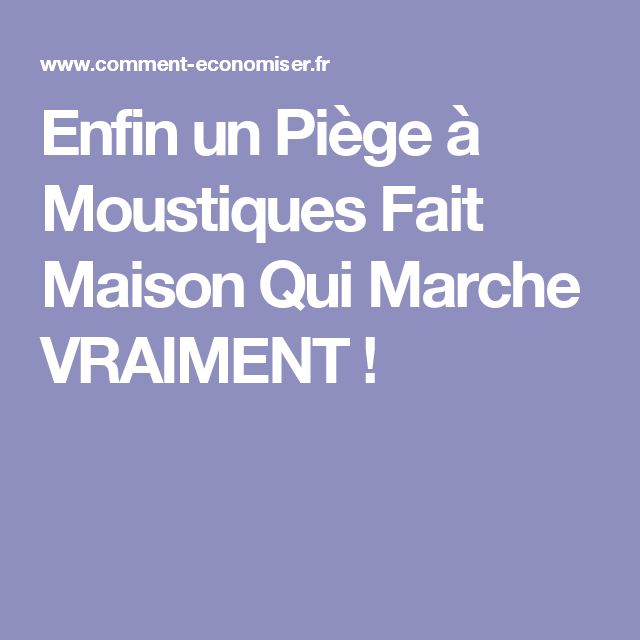 les 25 meilleures id es concernant piege a mouche maison sur pinterest piege mouche r pulsif. Black Bedroom Furniture Sets. Home Design Ideas