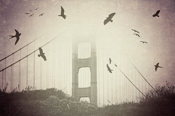 Golden Gate Bridge - 8x10 photograph - Birds over the Bay - fine art print - vintage photography - black and white  - San Francisco