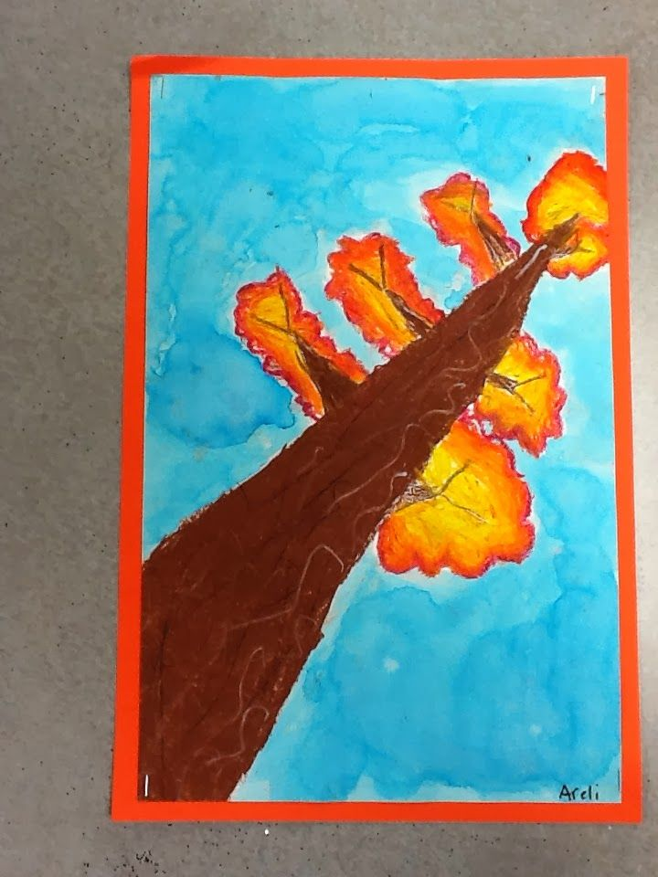 The 2 nd  grade students learned about the life cycle of a tree through the book, Sky Tree .  We also discussed what a life...