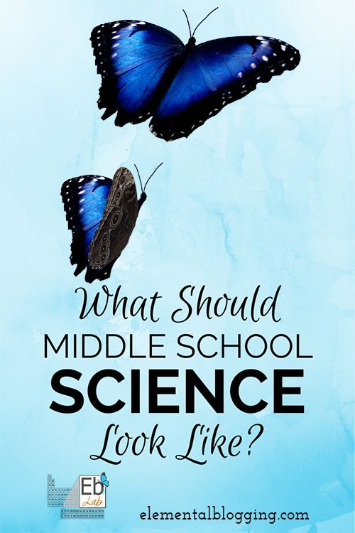What should middle school science look like? Learn your goals and tools along with how to put them together at Elemental Blogging