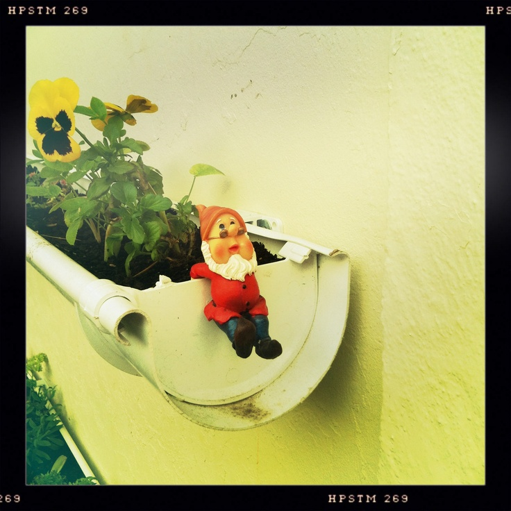 One of the many little men that look after my garden...
