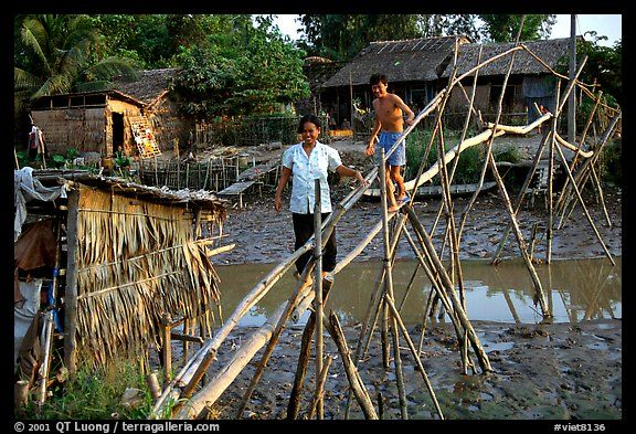 bamboo bridges | Bamboo bridge near Long Xuyen. Mekong Delta, Vietnam (color)