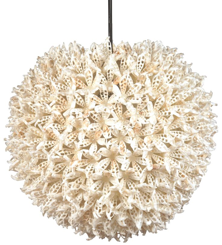 Real shells hand applied in intricate design to resin sphere md31 venice househanging lightsdovetail furnitureresincandelabrashellsconch