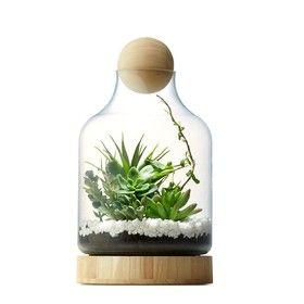 Terra Vase $15