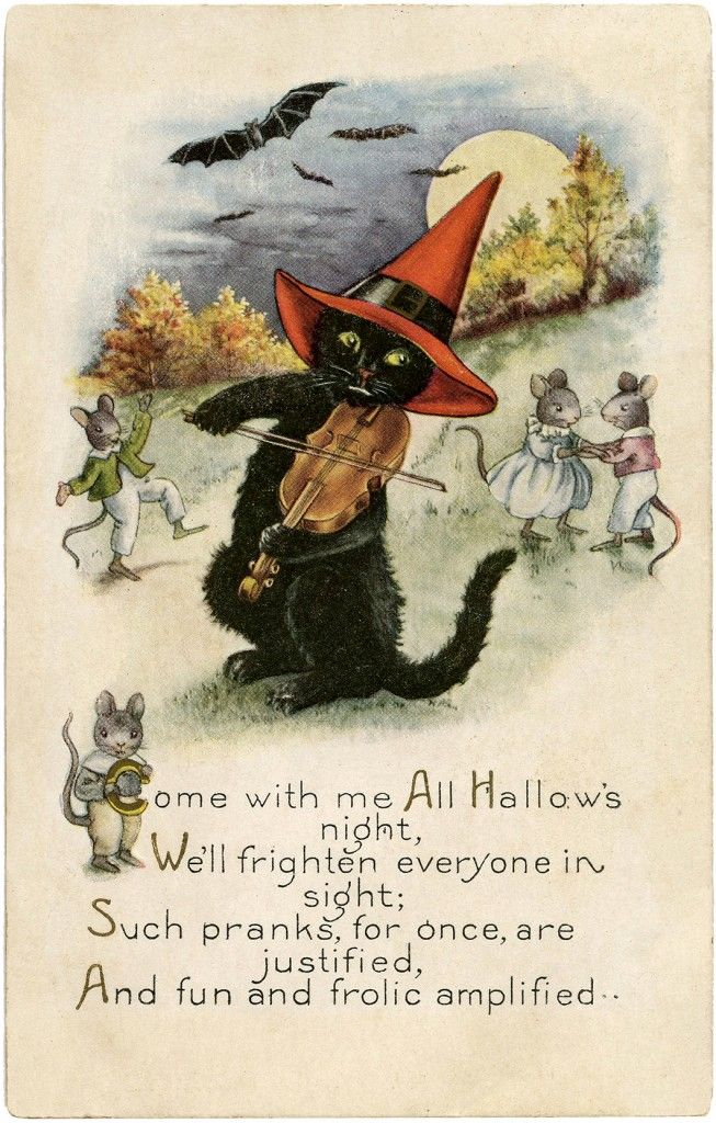 Cute Black Cat Digital Freebie! | Today I'm offering this Cute Black Cat Digital Freebie! Featured above is a darling Vintage Postcard showing a Black Cat in a red Witch Hat. The Cat is playing the Violin, while several mice dance around him! So cute! A fun Card for your Halloween Craft Projects! | The Graphics Fairy: