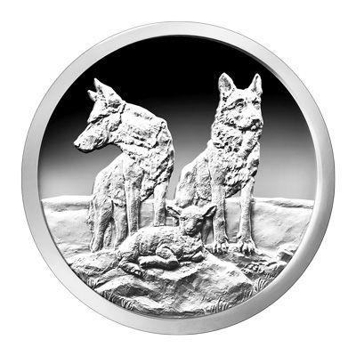 Twee wolven die een lammetje beschermen.