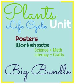 This Bundle is perfect for the Plants Life Cycle unit! It has the following…