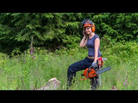 Die Baumspezialisten Baumpflege Baum fällen schneiden Sturmnotdienst Baden Baden – Die Baumspezialisten Baumpflege Baum fällen schneiden Sturmnotdienst Baden Baden