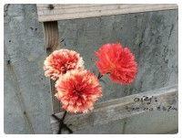 한지공예 한지꽃 카네이션  Carnation of Korean Paper,Hanji Flower Crafts (Natural Dyeing with Caesalpinia sappan) http://blog.naver.com/koreapaperart               #조화공예 #종이꽃 #페이퍼플라워 #한지꽃 #아트플라워 #조화 #조화인테리어 #인테리어조화 #인테리어소품 #에바폼 #디퓨저 #주문제작 #수강문의 #광고소품 #촬영소품 #디스플레이 #artflower #koreanpaperart #hanjiflower #paperflowers #craft #paperart #handmade #카네이션