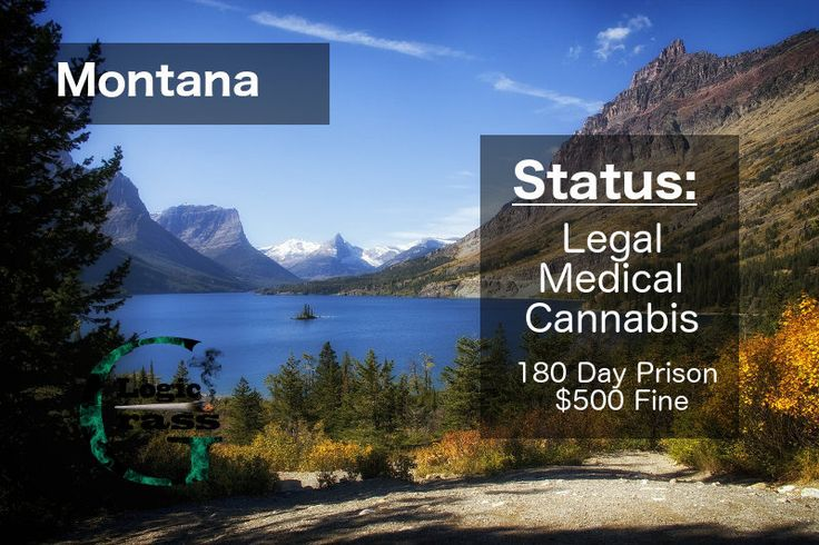 Check out the legal status of marijuana in Montana #marijuanalegalization #cannabiscommunity