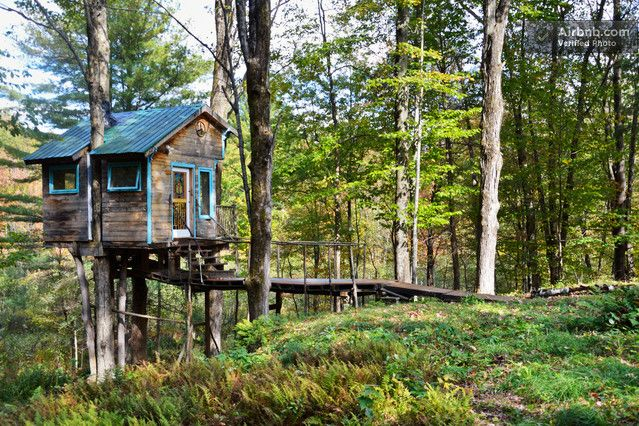 The Tiny Fern Forest Treehouse in Lincoln: Dreams Houses, The Loft, Trees Houses, Tiny Ferns, Luxury Trees, Forests Treehouse, Ferns Forests, Hot Tubs, Around The World