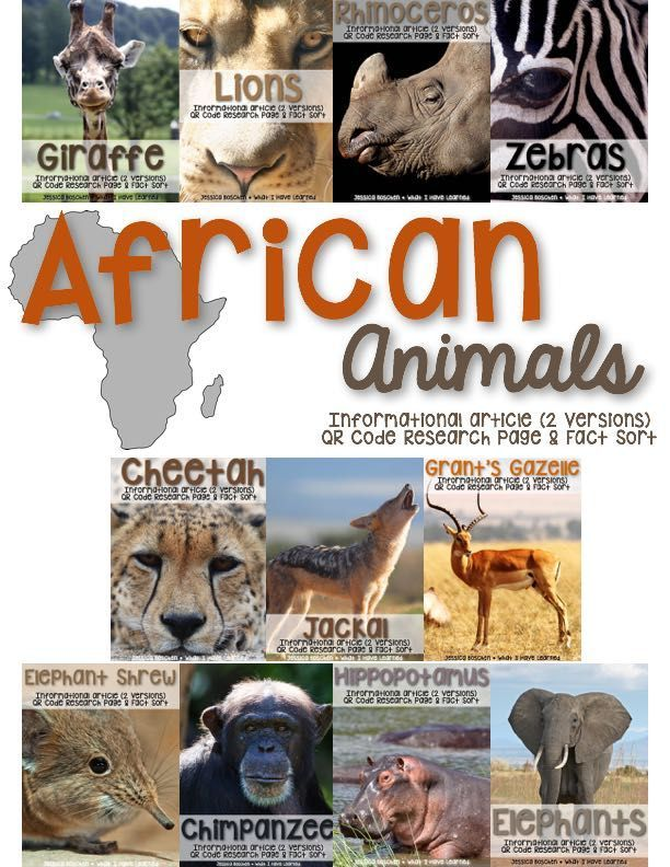 African Animals: Informational Article, QR Code Research Page & Fact Sort is a set of 11 informational articles all about African Animals. These articles are full of interesting facts and details that students can use during reading and writing activities. I use these articles as a resource when researching and writing about animals.  Perfect for the new NGSS for Habitats.