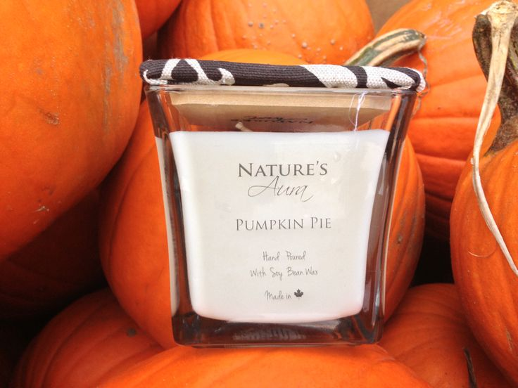 I don't know about you, but pumpkin pie always hits the spot! Get your pumpkin pie scented soy candle by going to www.natures-aura.com
