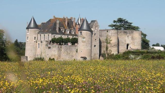 Le château de Luynes n'ouvrira plus au public - 13/04/2016 - La Nouvelle République Indre-et-Loire