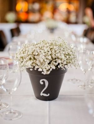 A pot of baby's breathe or wax flowers as both centerpiece for table and table numbers.