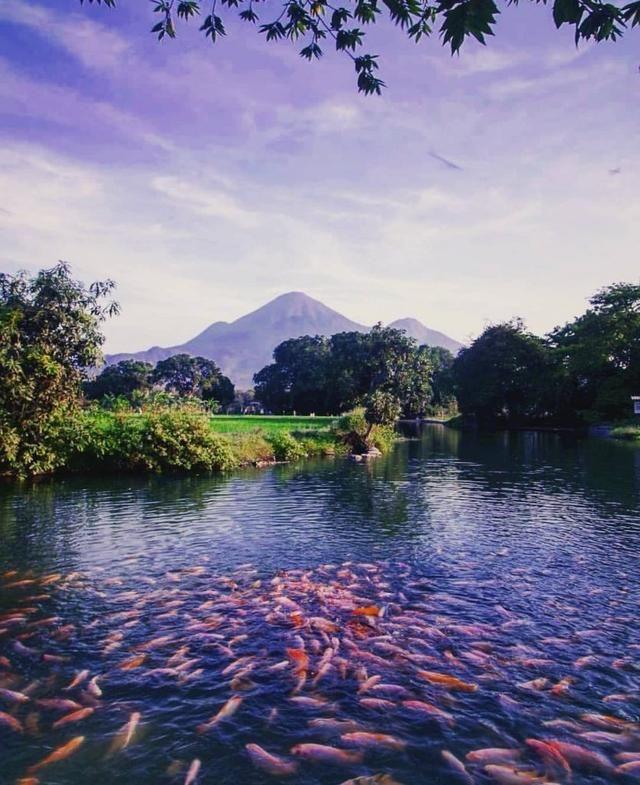 Eksplor Mojokerto Kota Dengan Banyak Destinasi Wisata Menarik Di 2020 Wisata Budaya Kota Pemandangan