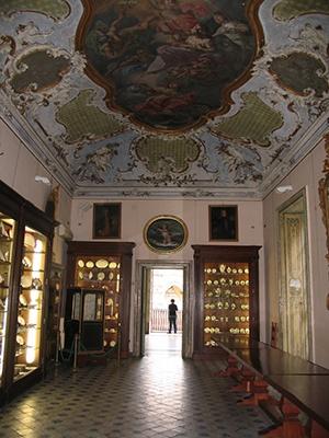 Una notte al Museo di Palazzo Asmundo #Palermo #ndm13 #nottedeimusei