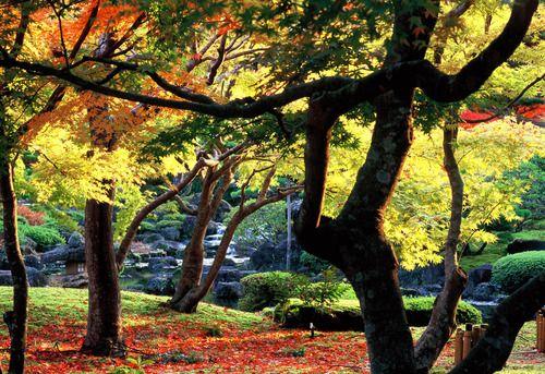 Yushien. Looking for more information aboout Shimane? Go Visit Matsue Tourist Association.  http://www.kankou-matsue.jp/