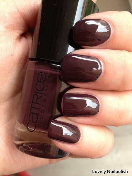 Catrice Vino Tinto | Herfst swatches: donker paarse nagellak