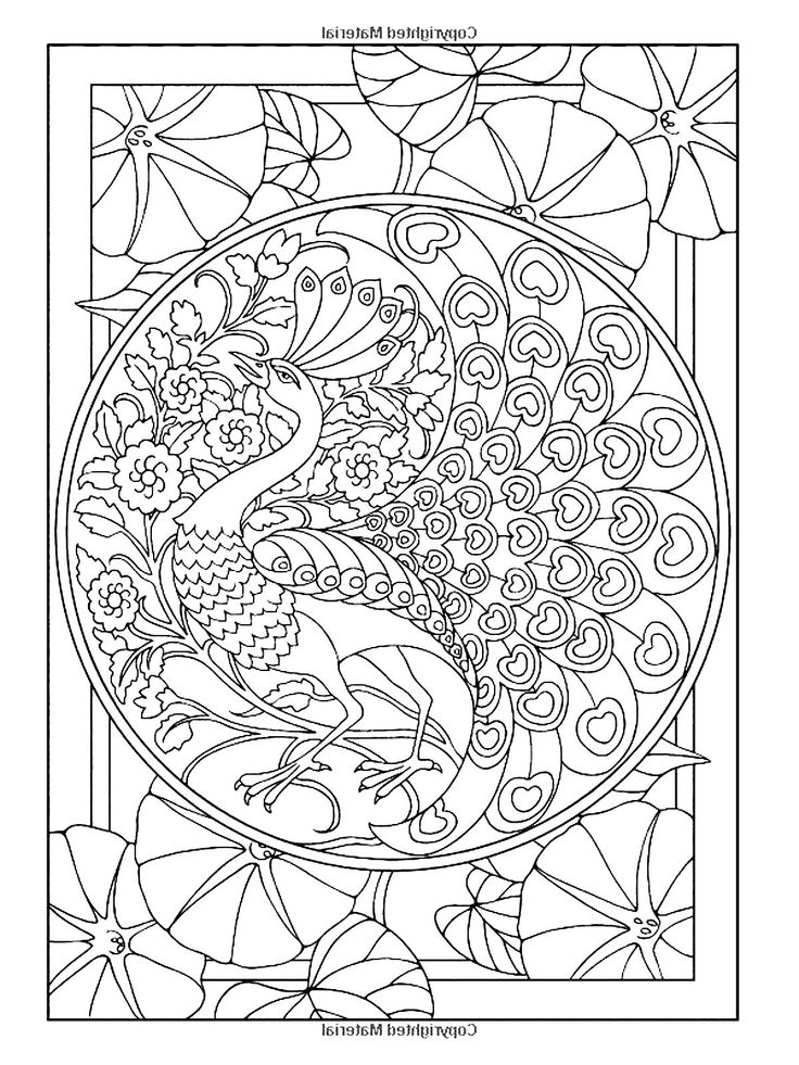 free coloring page coloring adult art nouveau style peacock the peacock an animal often used in art nouveau illustrations
