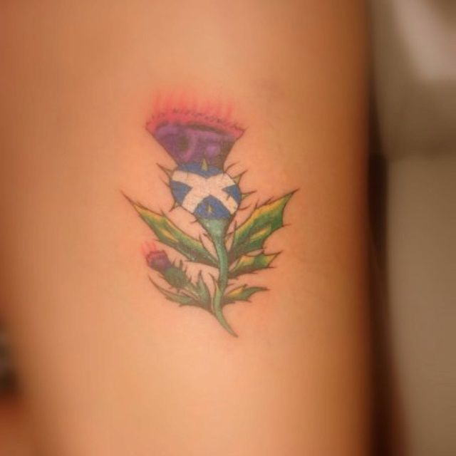 Scottish Thistle Tattoo Ideas: 250 Best Thistle Tattoos Images On Pinterest