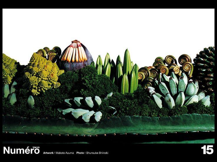 Numero TOKYO #15 Botanical Sculpture