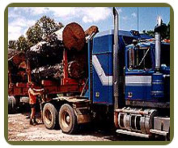 Get #firewood and mulch deliveries to the metropolitan areas of Perth, Western Australia. We have lower prices as well as good service and quality. Have a look at our website.