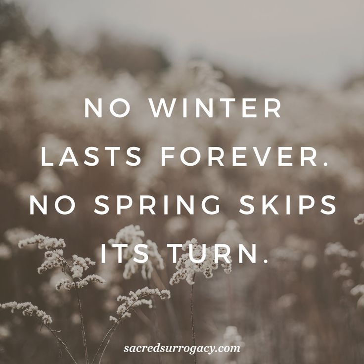 No winter lasts forever. No spring skips its turn. surrogacy. surrogacy in canada. surrogate. egg donor. egg donation. infertility. motherhood. single mom. pregnancy loss. gay dads. lgbt families. lgbtq. quote. quote of the day.