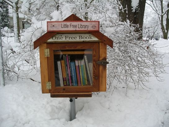 """Such a cool thing......Andrew Carnegie built 2,509 libraries around the turn of the 20th century. Now Rick Brooks and Todd Bol are on a mission to top his total with their 2x2 Little Free Libraries. The little boxes are designed to hold about 20 books to borrow and enjoy. Each Little Free Library runs on the honor system, displaying a sign that asks patrons to """"Take a Book, Leave a Book."""""""