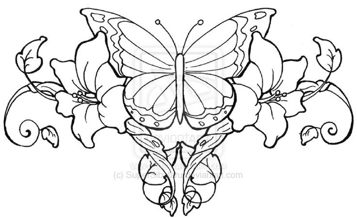 Butterfly designs to color - photo#6