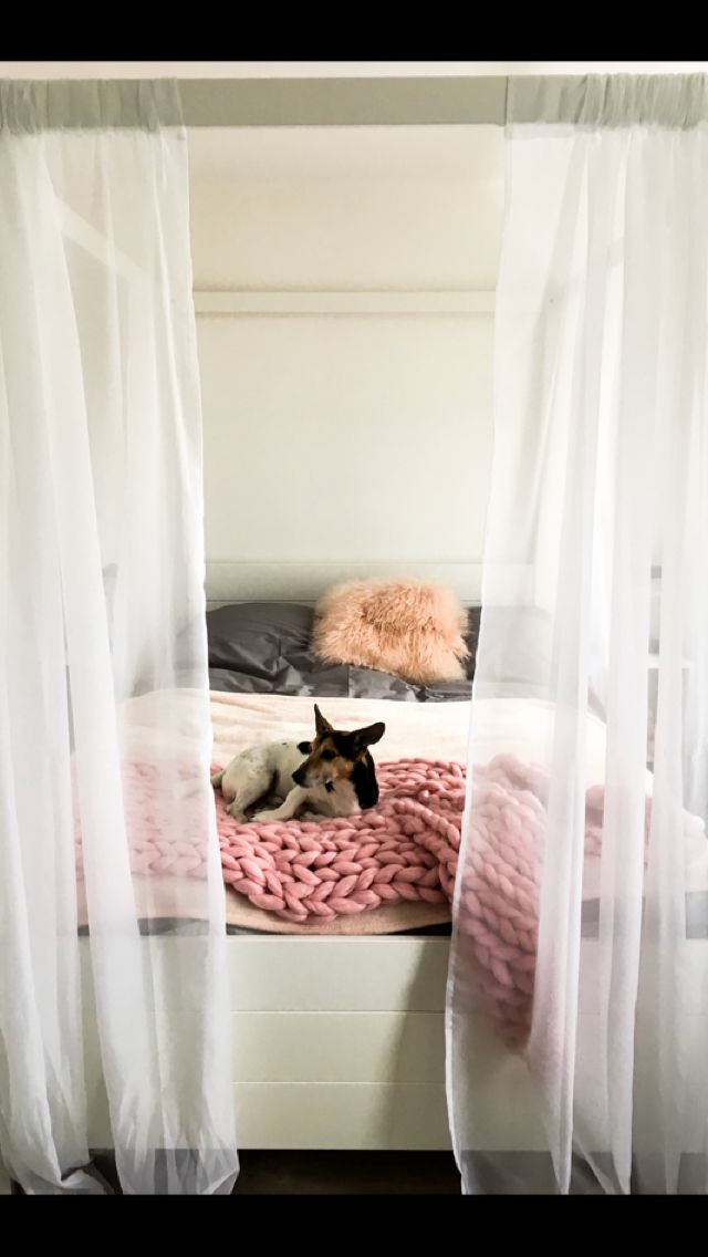 My blush bedroom with grey bed covers and of course an adorable pup for a final touch <3 #aesthetic #blush #cute #bedroomgoals #love #aestheticbedroom