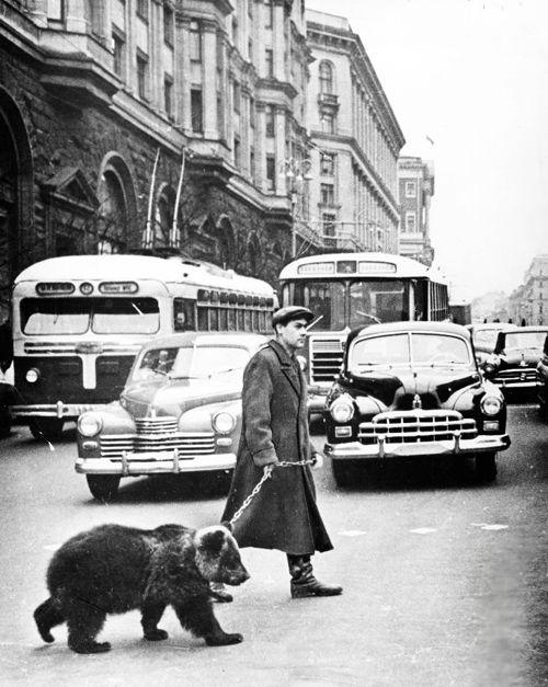 1963 Gregory Sukhov lleva su oso mascota de Mickey a dar un paseo en Moscú.  (A través de vintagegal)