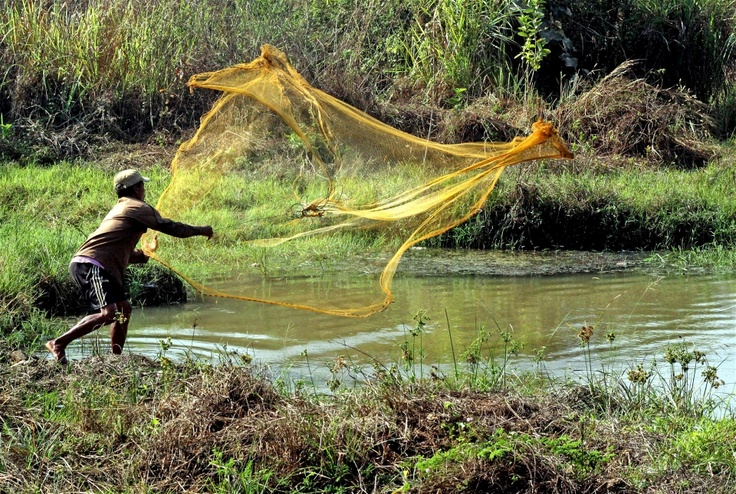A farmer throws a net into a creek in Bago District, Myanmar