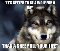 Image result for inspirational quotes about strength wolves