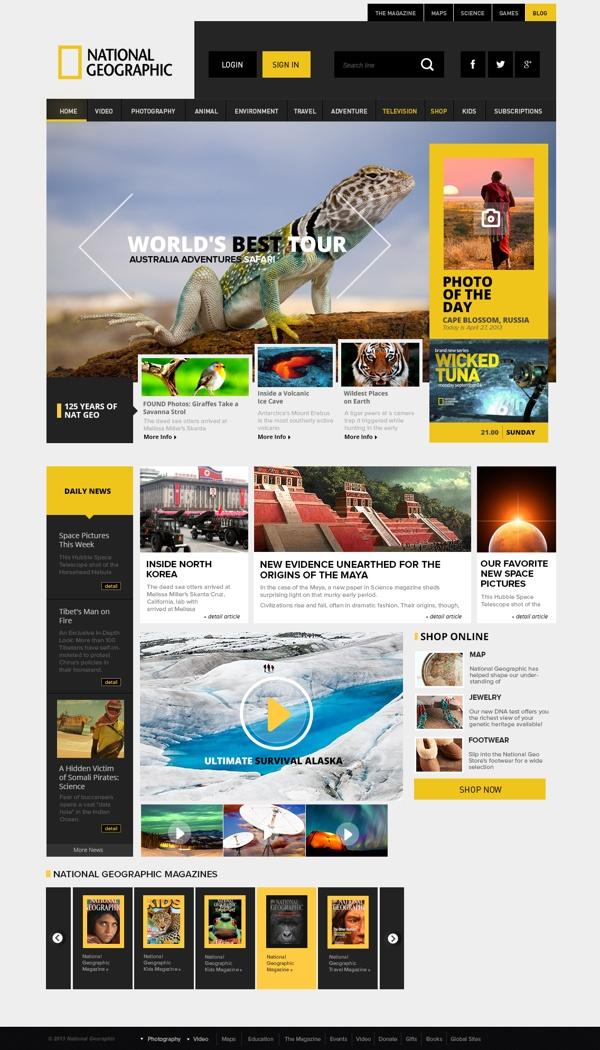 National Geographic re-design by Enes Danış, via Behance