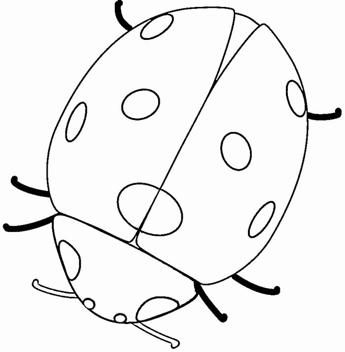 32 Lady Bug Coloring Page In 2020 With Images Ladybug