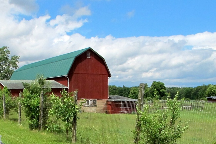 Barn on Deer Farm Tour in Ruch NY w/ Random Adventures in Upstate NY and beyond!